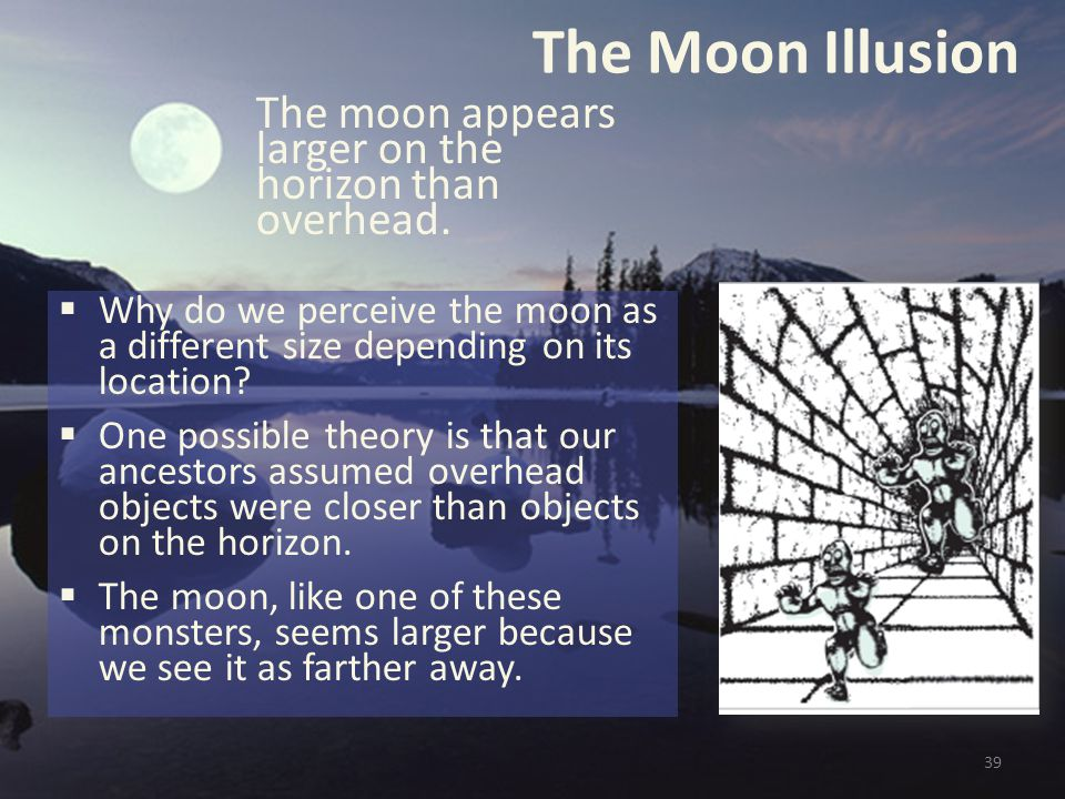 The Moon Illusion  Why do we perceive the moon as a different size depending on its location?  One possible theory is that our ancestors assumed ove