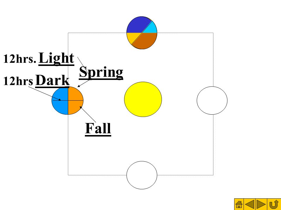 Fall Spring 12hrs. Light 12hrs Dark