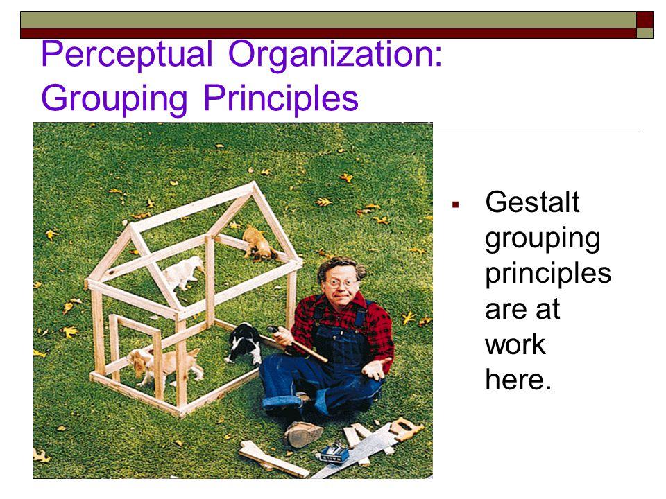 Perceptual Organization: Grouping Principles  Gestalt grouping principles are at work here.