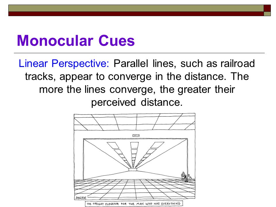 Monocular Cues Linear Perspective: Parallel lines, such as railroad tracks, appear to converge in the distance.