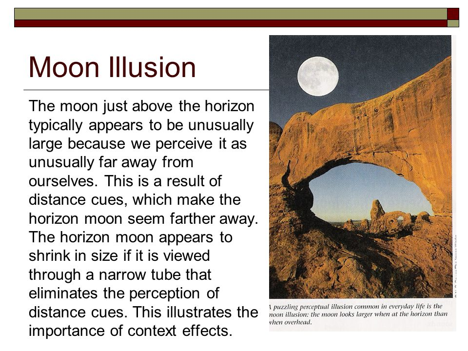Moon Illusion The moon just above the horizon typically appears to be unusually large because we perceive it as unusually far away from ourselves.