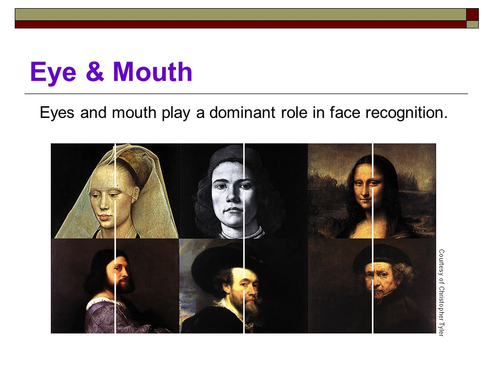 Eye & Mouth Eyes and mouth play a dominant role in face recognition. Courtesy of Christopher Tyler