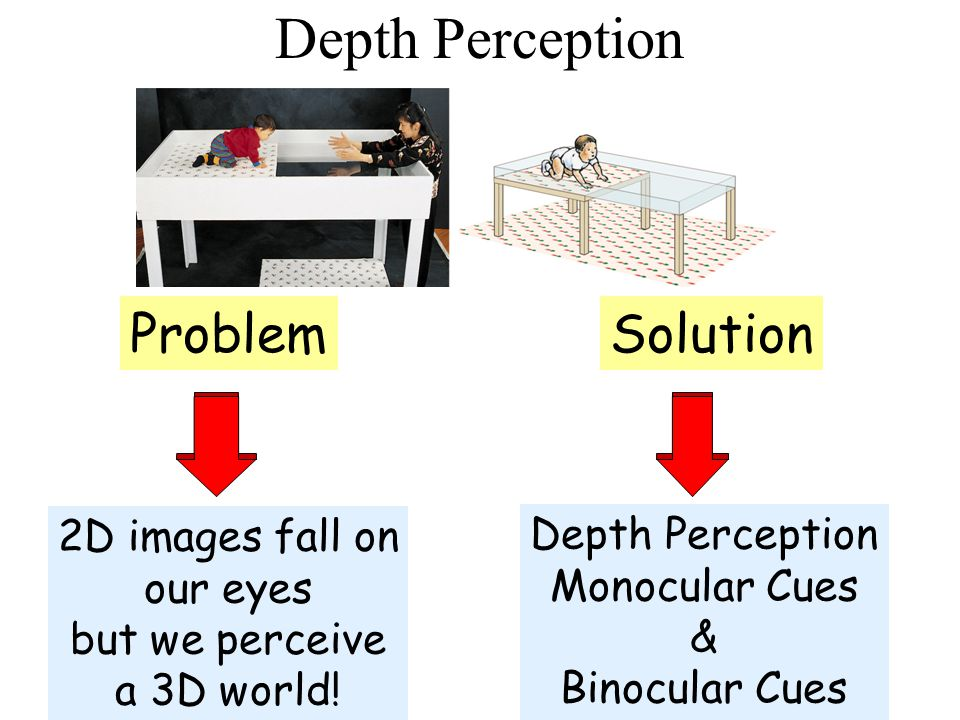 Depth Perception Problem 2D images fall on our eyes but we perceive a 3D world! Solution Depth Perception Monocular Cues & Binocular Cues