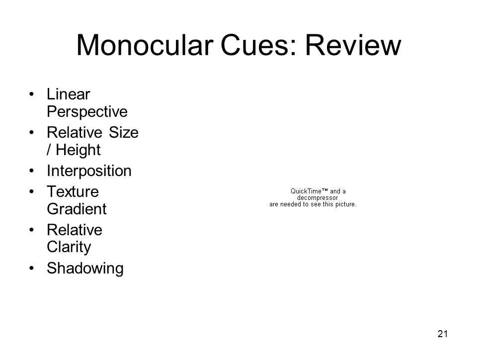 21 Monocular Cues: Review Linear Perspective Relative Size / Height Interposition Texture Gradient Relative Clarity Shadowing
