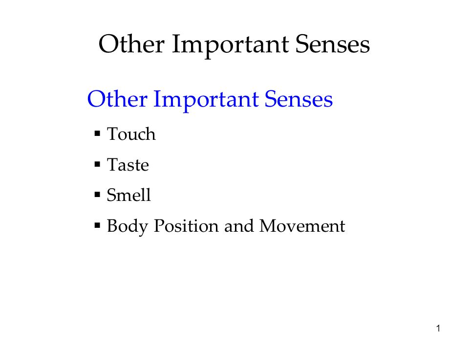 2 Other Important Senses Sense of touch is a mix of four distinct skin senses- pressure, warmth, cold, and pain.