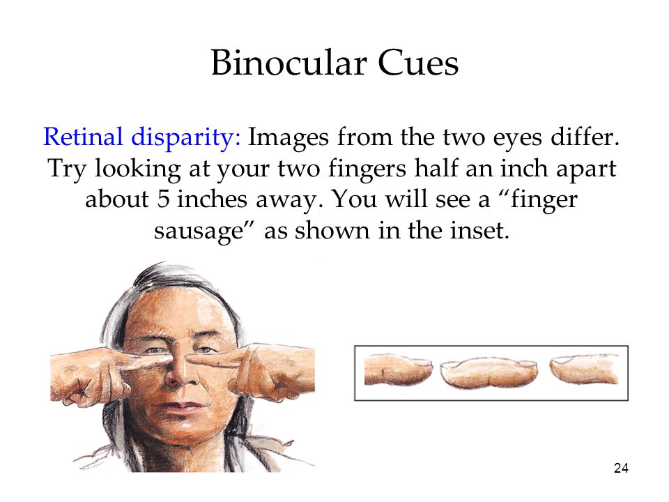 24 Binocular Cues Retinal disparity: Images from the two eyes differ. Try looking at your two fingers half an inch apart about 5 inches away. You will