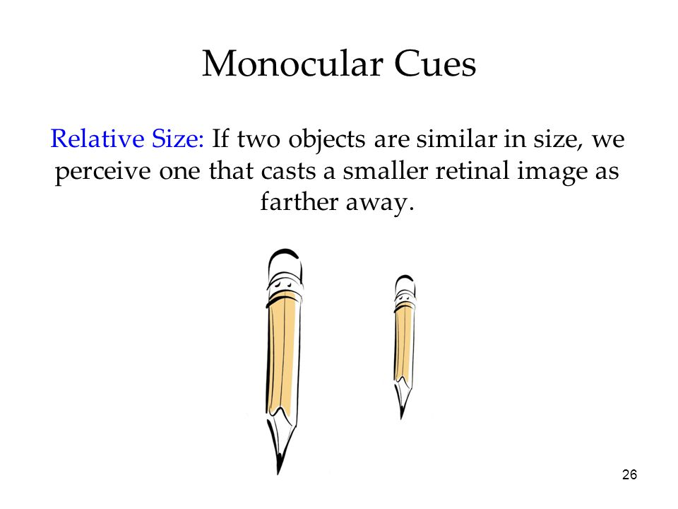 26 Monocular Cues Relative Size: If two objects are similar in size, we perceive one that casts a smaller retinal image as farther away.