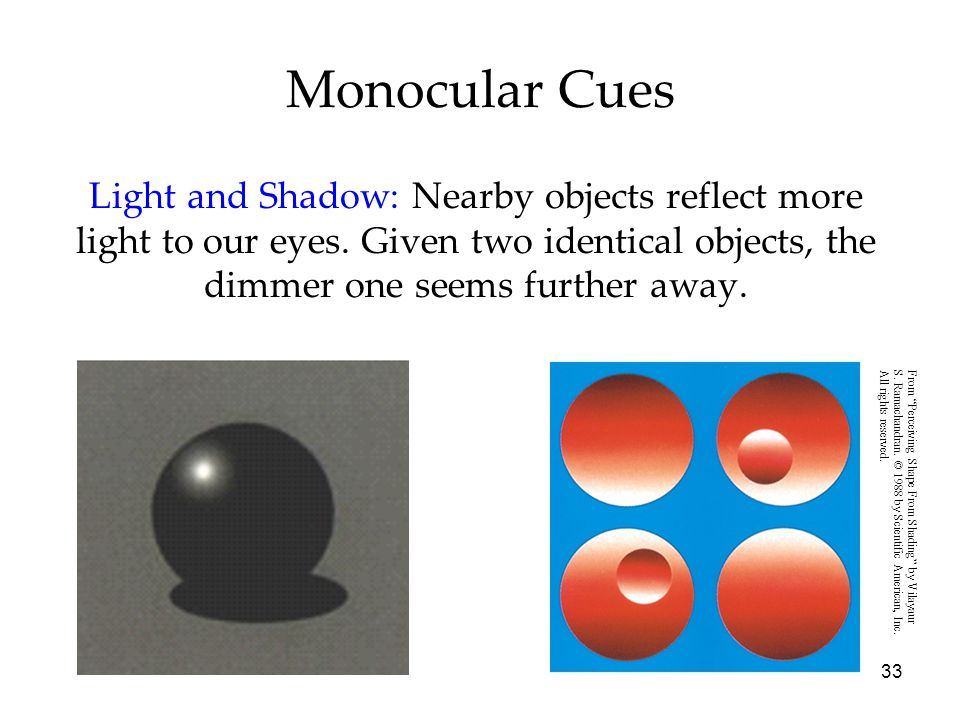 33 Monocular Cues Light and Shadow: Nearby objects reflect more light to our eyes. Given two identical objects, the dimmer one seems further away. Fro