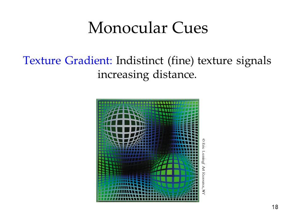 18 Monocular Cues Texture Gradient: Indistinct (fine) texture signals increasing distance.