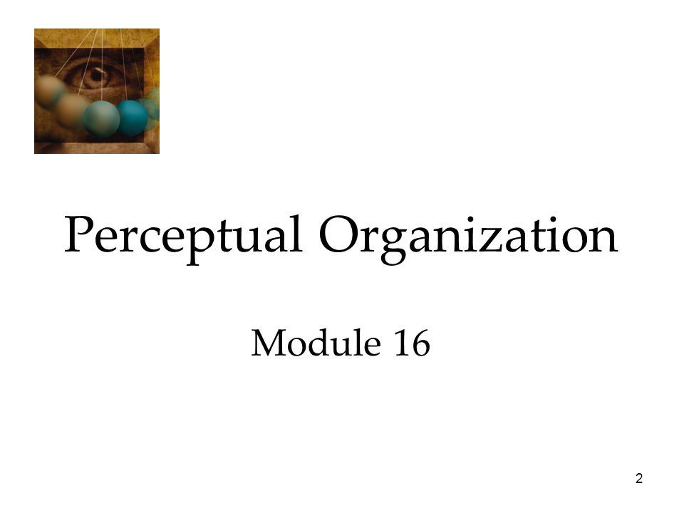 2 Perceptual Organization Module 16