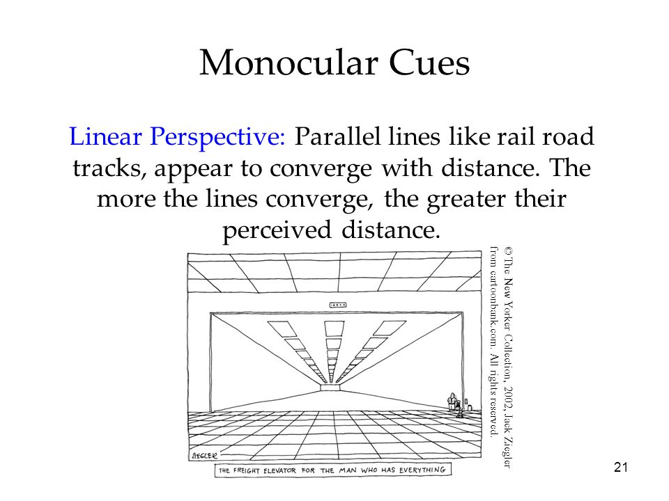 21 Monocular Cues Linear Perspective: Parallel lines like rail road tracks, appear to converge with distance.