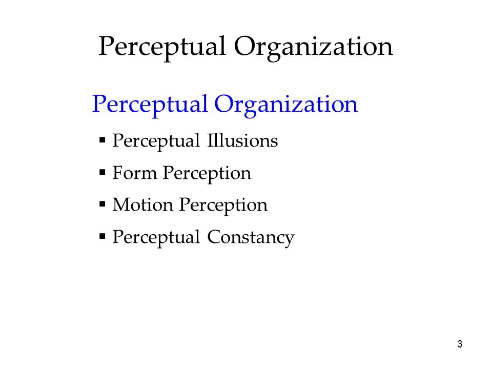 3 Perceptual Organization  Perceptual Illusions  Form Perception  Motion Perception  Perceptual Constancy