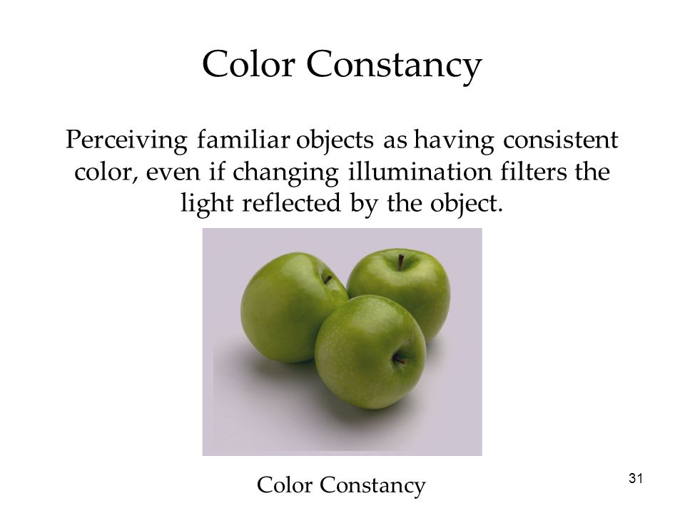 31 Perceiving familiar objects as having consistent color, even if changing illumination filters the light reflected by the object.