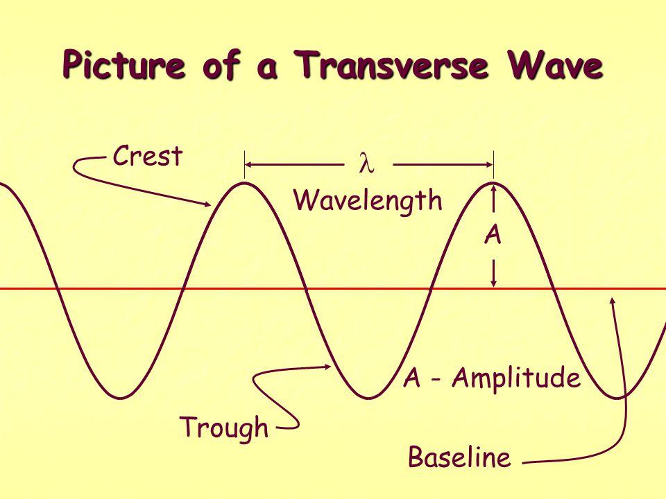 Picture of a Transverse Wave Crest Trough Wavelength A A - Amplitude Baseline