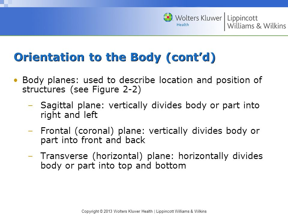 Copyright © 2013 Wolters Kluwer Health | Lippincott Williams & Wilkins Orientation to the Body (cont'd) Body planes: used to describe location and pos