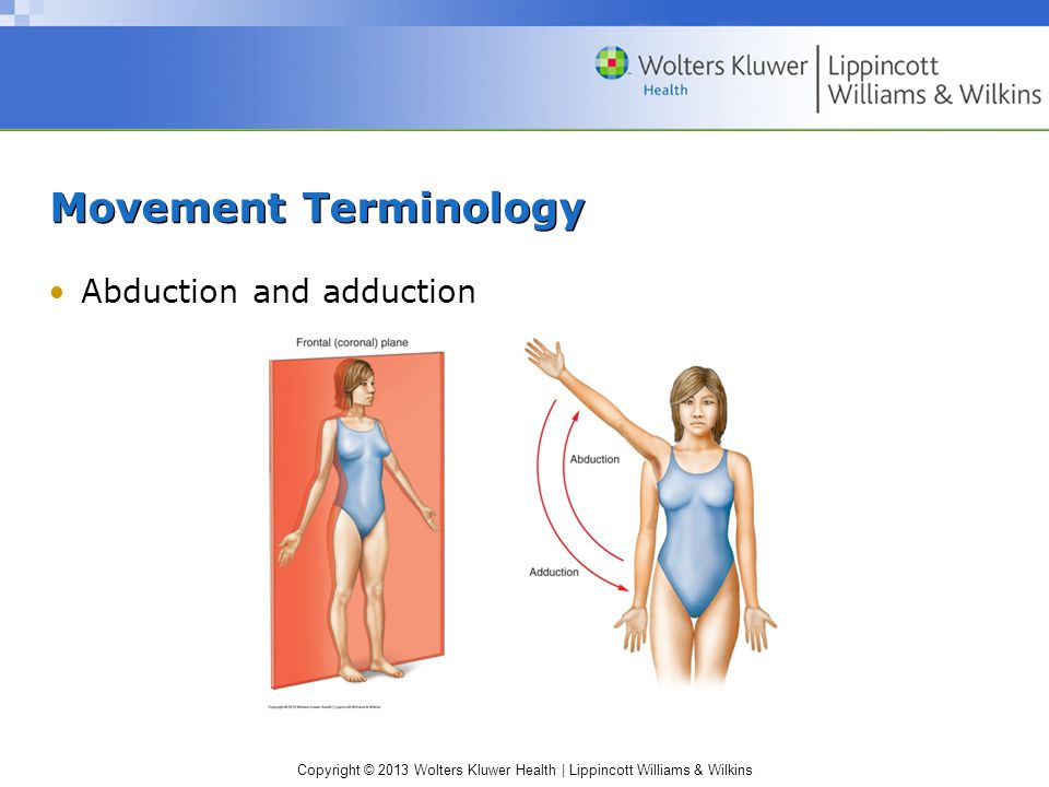 Copyright © 2013 Wolters Kluwer Health | Lippincott Williams & Wilkins Movement Terminology Abduction and adduction