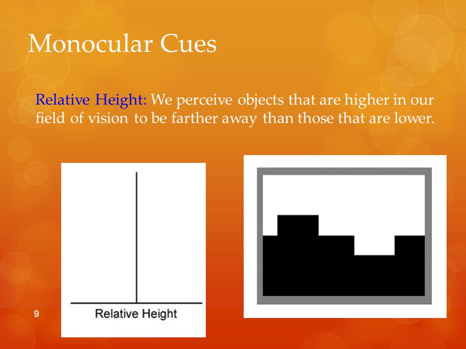 Monocular Cues Relative motion: Objects closer to a fixation point move faster and in opposing direction to those objects that are farther away from a fixation point, moving slower and in the same direction.