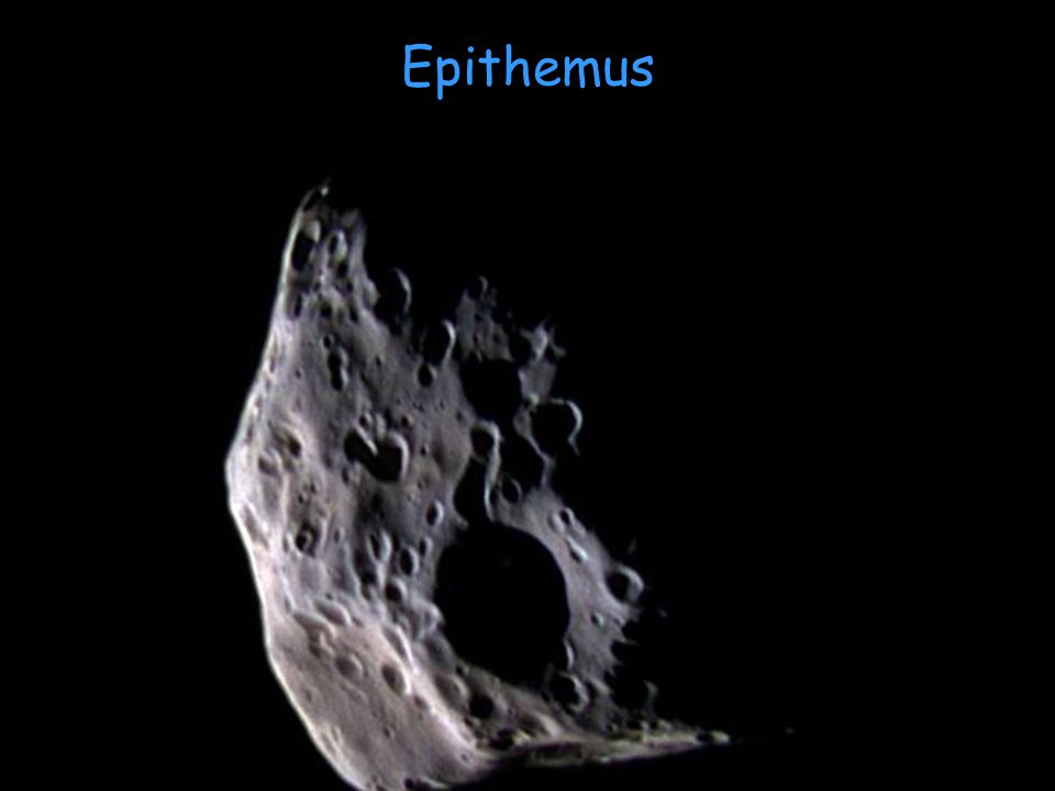 Epithemus