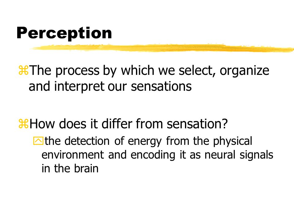 Perception zThe process by which we select, organize and interpret our sensations zHow does it differ from sensation.