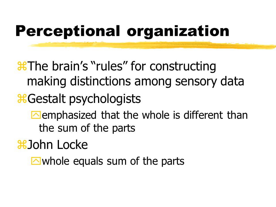 Perceptional organization zThe brain's rules for constructing making distinctions among sensory data zGestalt psychologists yemphasized that the whole is different than the sum of the parts zJohn Locke ywhole equals sum of the parts