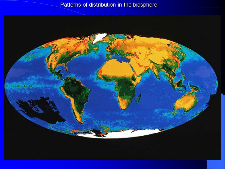 Patterns of distribution in the biosphere