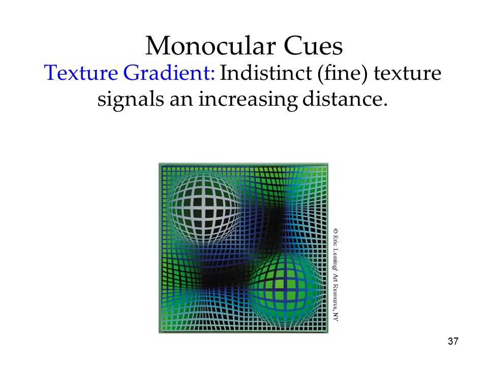 37 Monocular Cues Texture Gradient: Indistinct (fine) texture signals an increasing distance. © Eric Lessing/ Art Resource, NY