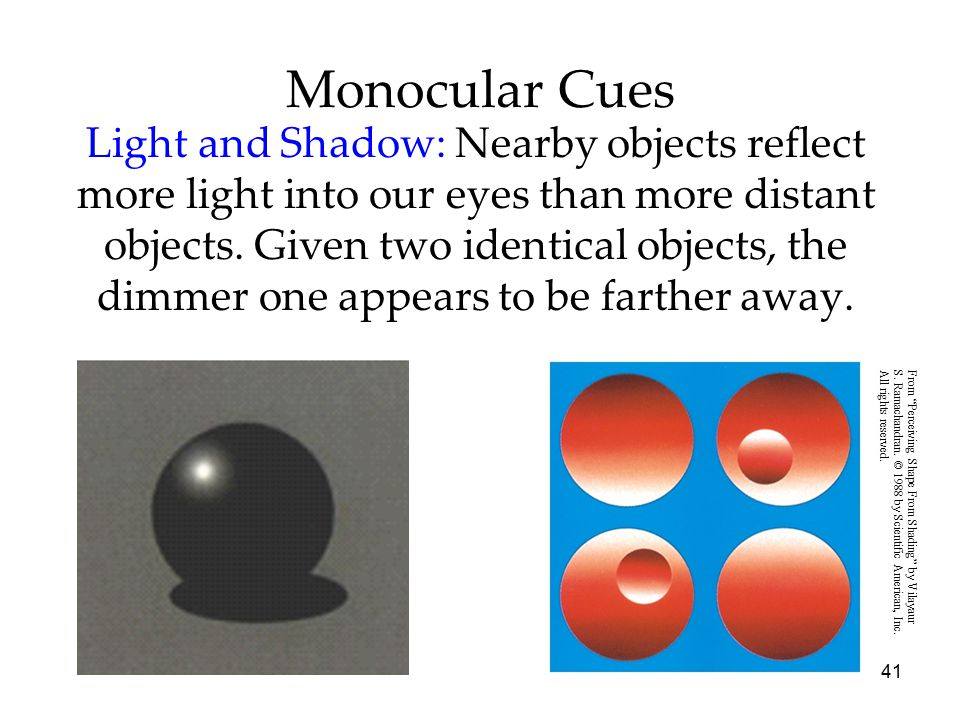 41 Monocular Cues Light and Shadow: Nearby objects reflect more light into our eyes than more distant objects. Given two identical objects, the dimmer