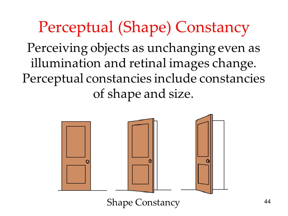 44 Perceptual (Shape) Constancy Perceiving objects as unchanging even as illumination and retinal images change. Perceptual constancies include consta