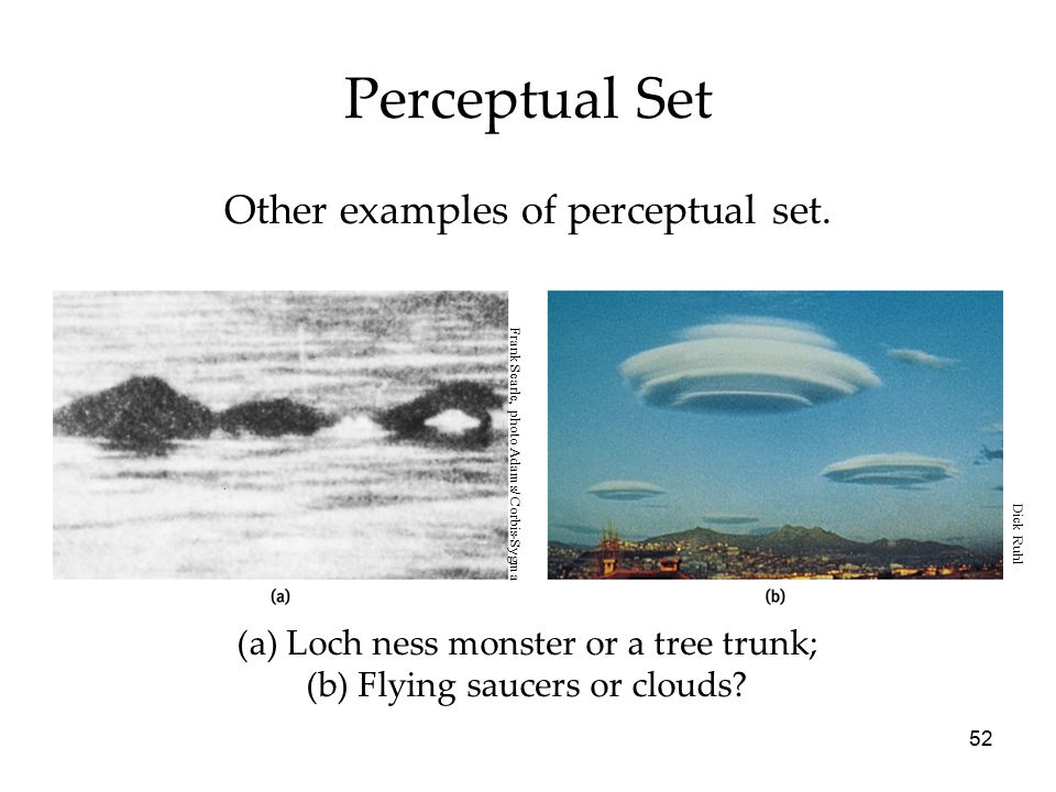 52 (a) Loch ness monster or a tree trunk; (b) Flying saucers or clouds? Perceptual Set Other examples of perceptual set. Frank Searle, photo Adams/ Co