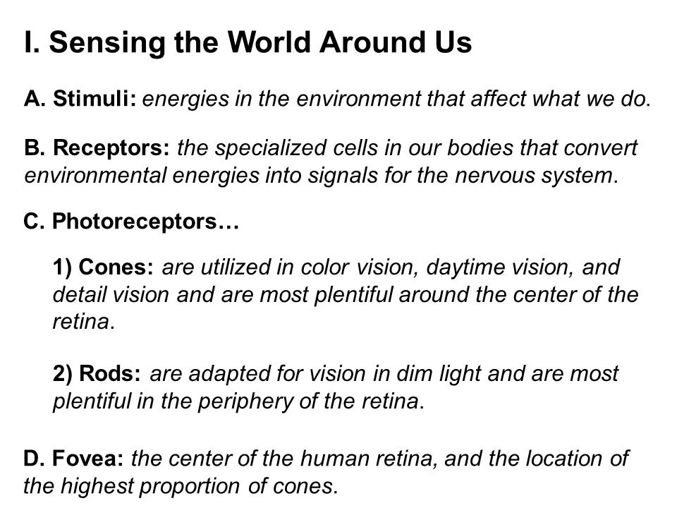 II.The Detection of Light A. Light: the stimuli that the visual system is designed to detect.