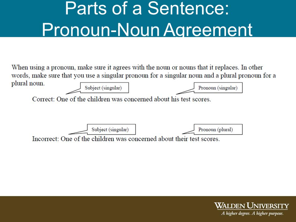 Parts of a Sentence: Pronoun-Noun Agreement