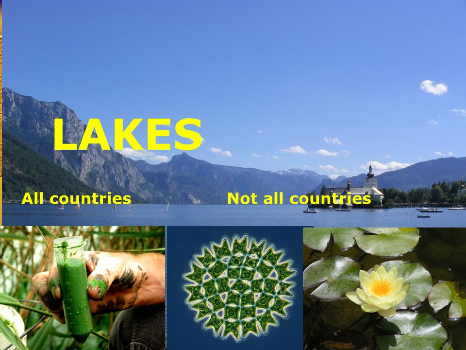 Reference conditions LAKES All countriesNot all countries