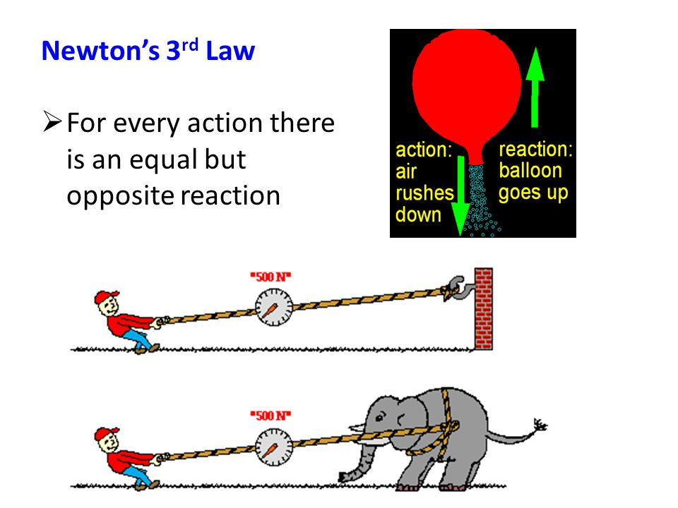 Newton's 3 rd Law  For every action there is an equal but opposite reaction