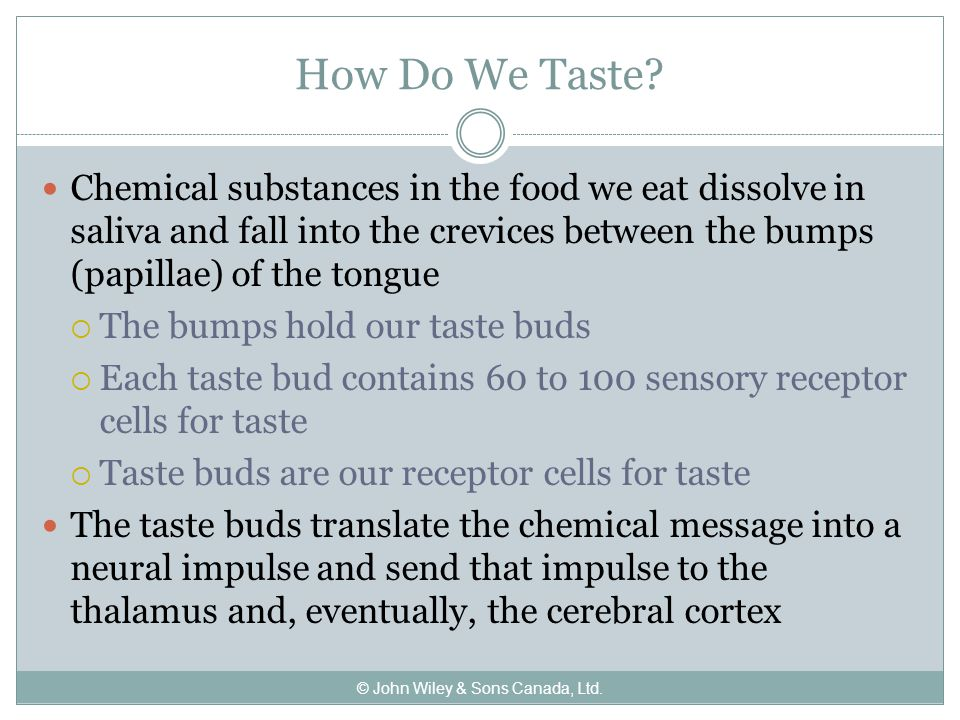 How Do We Taste.