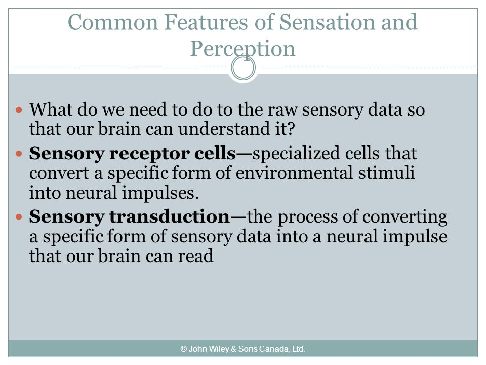 Common Features of Sensation and Perception What do we need to do to the raw sensory data so that our brain can understand it.