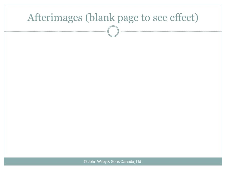 Afterimages (blank page to see effect) © John Wiley & Sons Canada, Ltd.