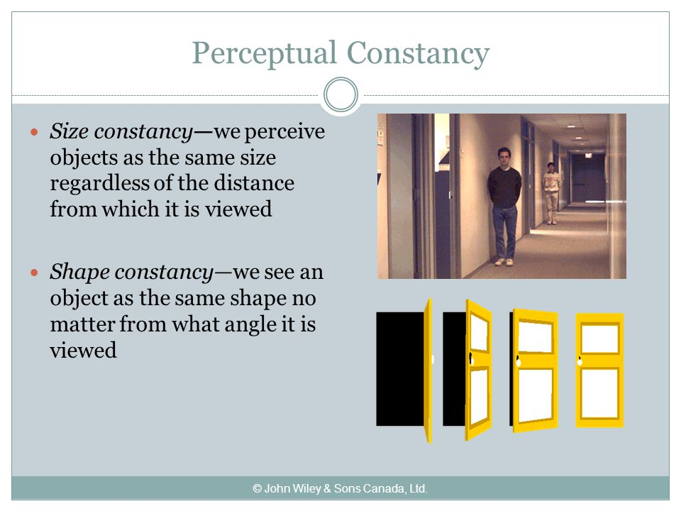 Perceptual Constancy Size constancy—we perceive objects as the same size regardless of the distance from which it is viewed Shape constancy—we see an object as the same shape no matter from what angle it is viewed © John Wiley & Sons Canada, Ltd.
