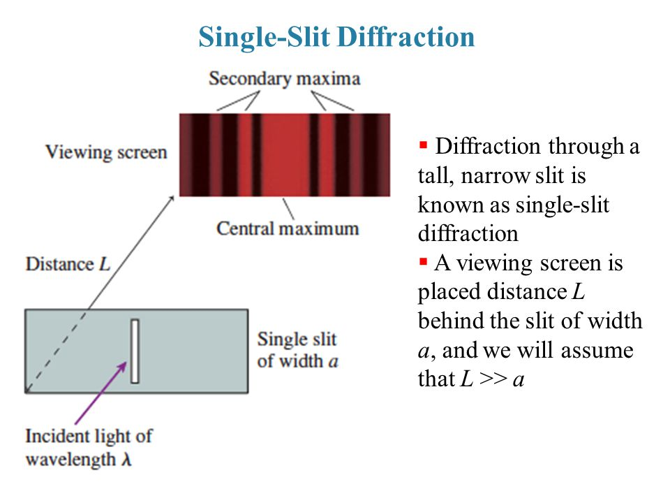 Single-Slit Diffraction  Diffraction through a tall, narrow slit is known as single-slit diffraction  A viewing screen is placed distance L behind t