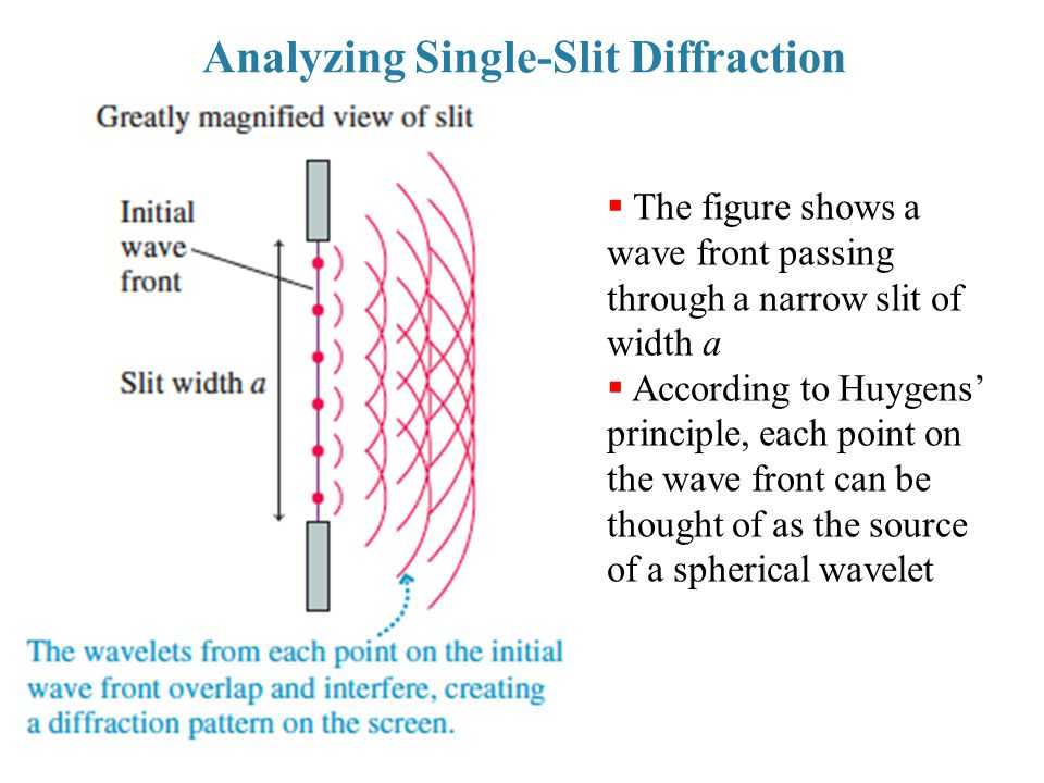 Analyzing Single-Slit Diffraction  The figure shows a wave front passing through a narrow slit of width a  According to Huygens' principle, each poi