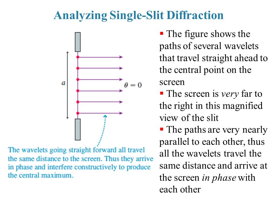 Analyzing Single-Slit Diffraction  The figure shows the paths of several wavelets that travel straight ahead to the central point on the screen  The