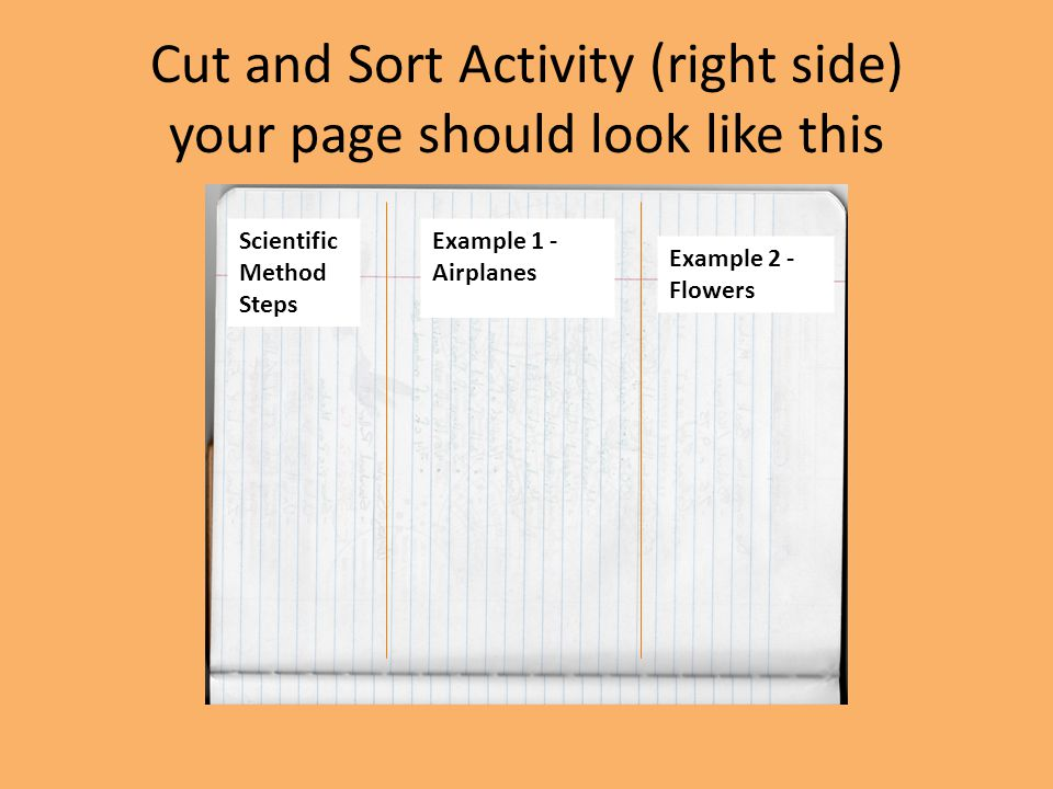 Cut and Sort Activity (right side) your page should look like this Scientific Method Steps Example 1 - Airplanes Example 2 - Flowers