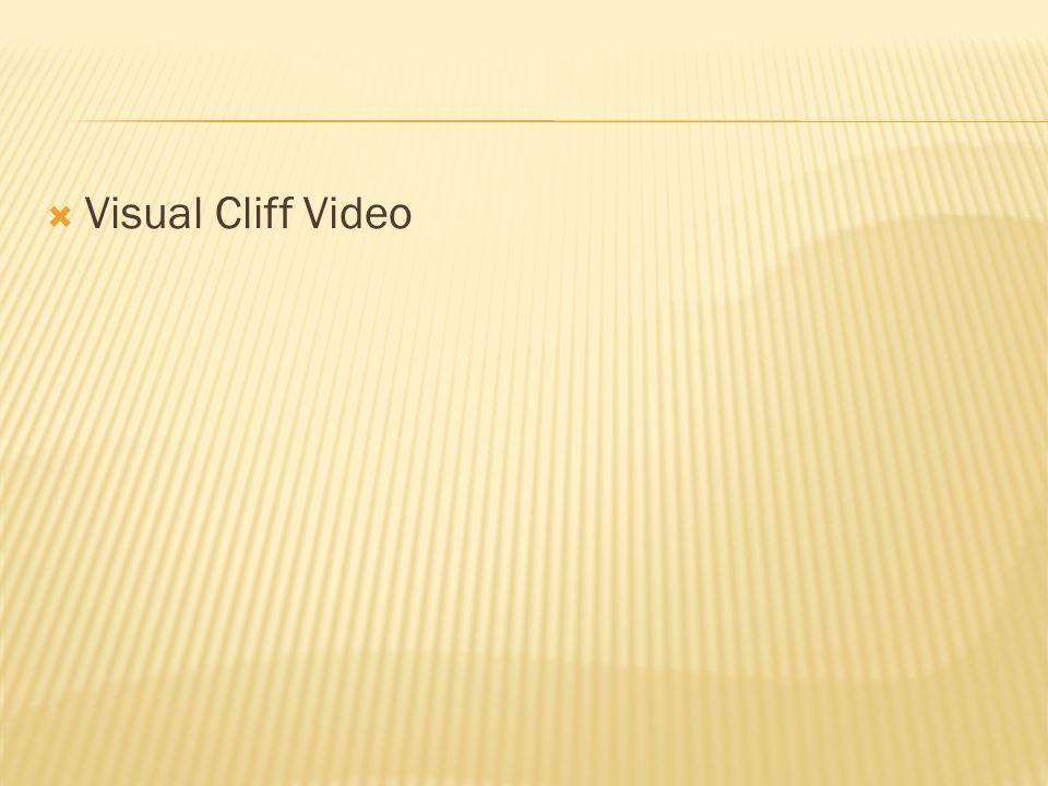  Visual Cliff Video