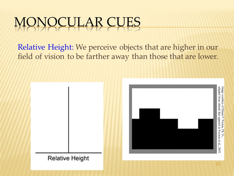 23 Relative Height: We perceive objects that are higher in our field of vision to be farther away than those that are lower.
