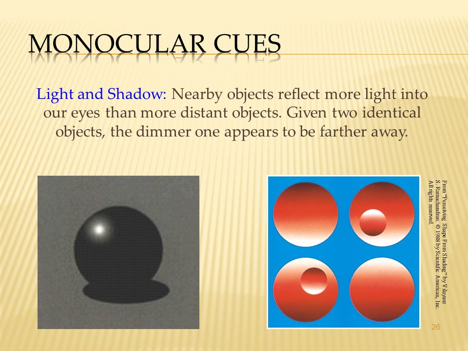 26 Light and Shadow: Nearby objects reflect more light into our eyes than more distant objects. Given two identical objects, the dimmer one appears to