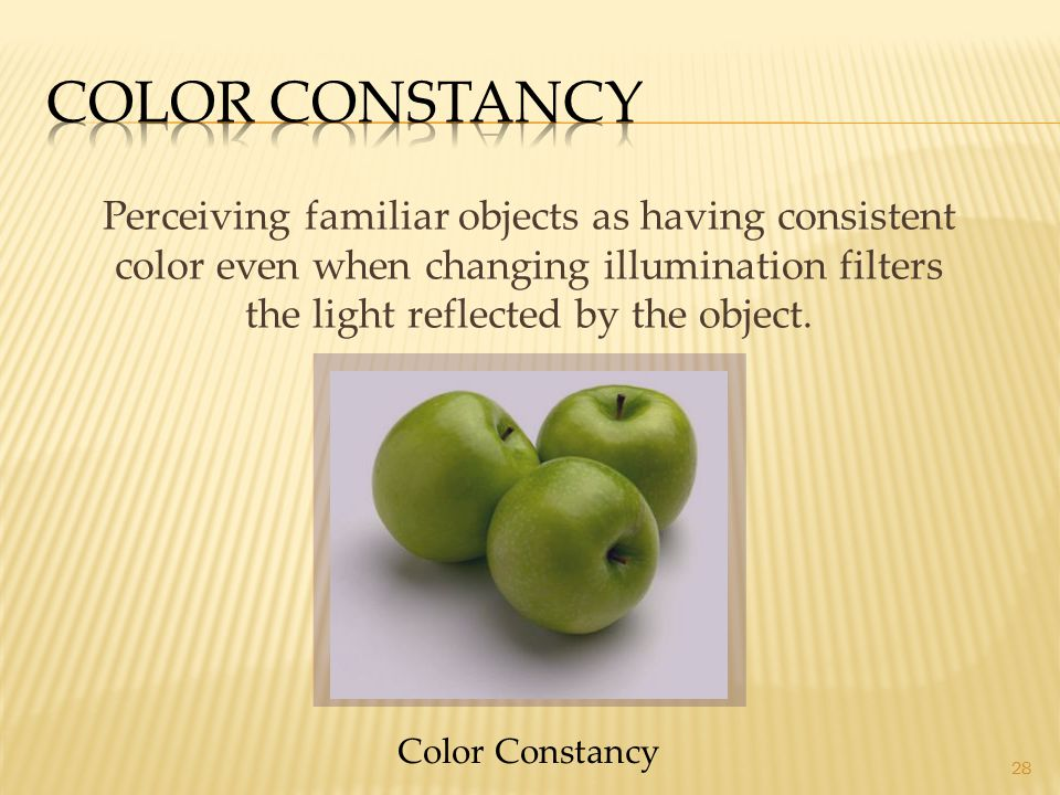 28 Perceiving familiar objects as having consistent color even when changing illumination filters the light reflected by the object. Color Constancy