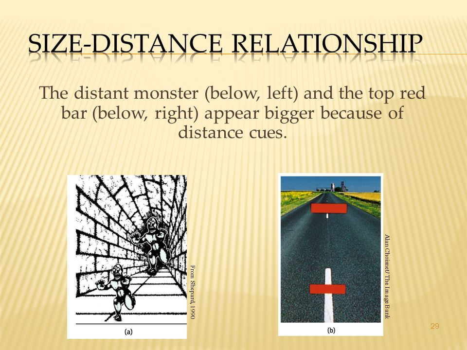 29 The distant monster (below, left) and the top red bar (below, right) appear bigger because of distance cues. From Shepard, 1990 Alan Choisnet/ The