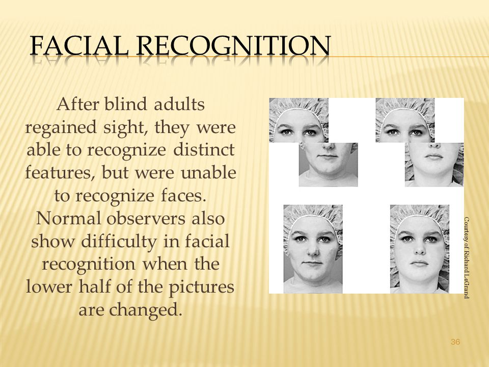 36 After blind adults regained sight, they were able to recognize distinct features, but were unable to recognize faces. Normal observers also show di