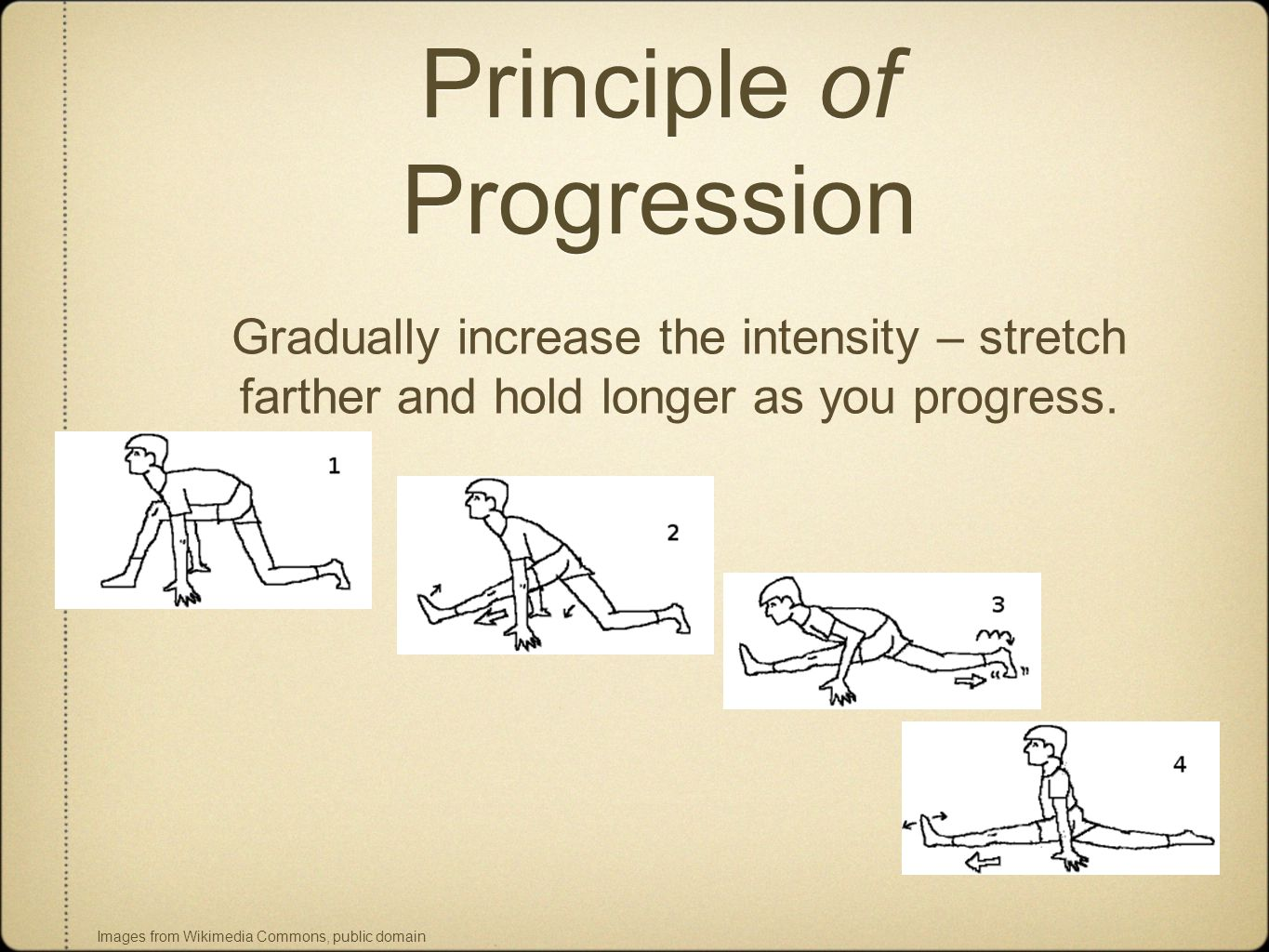 Principle of Progression Gradually increase the intensity – stretch farther and hold longer as you progress.