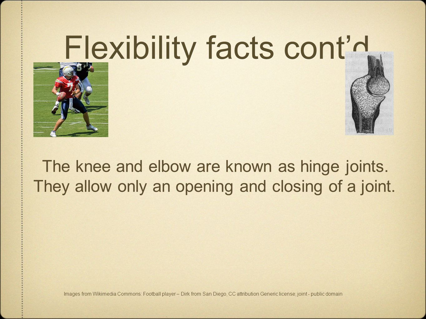 Flexibility facts cont'd. The knee and elbow are known as hinge joints.