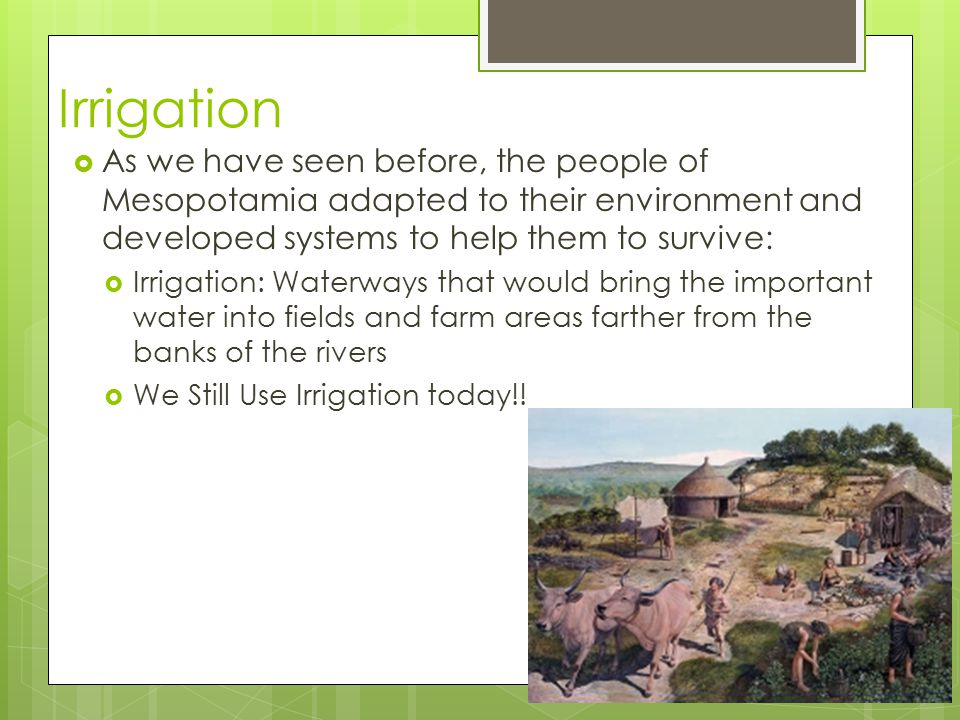 Irrigation  As we have seen before, the people of Mesopotamia adapted to their environment and developed systems to help them to survive:  Irrigatio